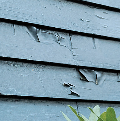 Close up image of an exterior wall where the pain film has loosen, and you see cracks and roll at exposed edges.